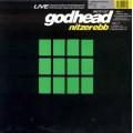 Nitzer Ebb  - Godhead (Live)
