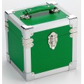 Steepletone Green & Silver Seven Inch Record Case -