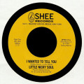 Little Nicky Soul - I Wanted To Tell You
