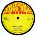 Desi Roots - He Aint Coming