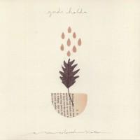 Yndi Halda - A Sun Coloured Shaker