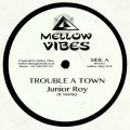 Junior Roy - Trouble A Town