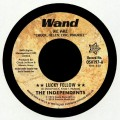 The Independents - Lucky Fellow