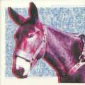 Protomartyr - Ultimate Success Today LRS Edition