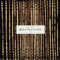 Steve Moore - Beloved Exile