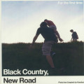 Black Country New Road - For The First Time - LRS 2021 Edition
