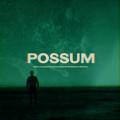 The Radiophonic Workshop - Possum