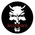 Black Veil Brides - Two Turntable Slipmats