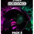 Various - 25 Years Of Skibadee Pack 2